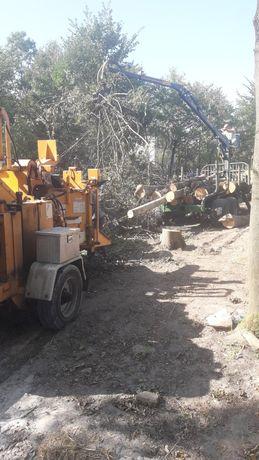 Usługi rębakiem wycinka drzew czyszczenie działek