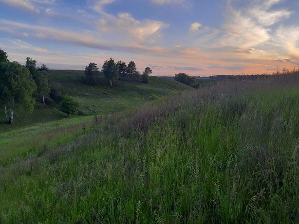 Продаж земельної ділянки у Великій Бугаївці