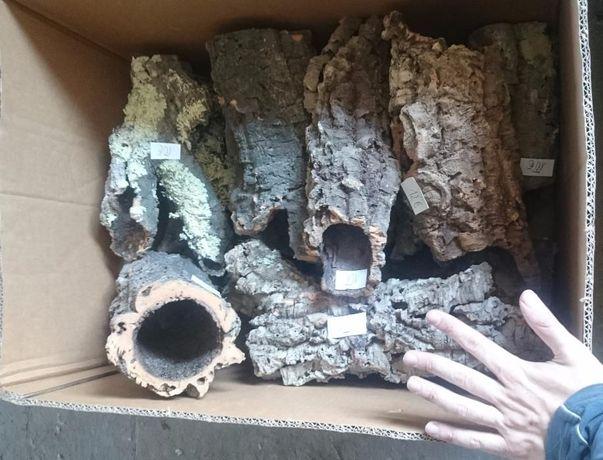 Korek, tuba korkowa, tuby - terrarium tropikalne, XXL