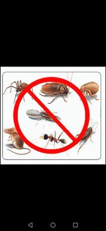 Избавим от тараканов и клопов