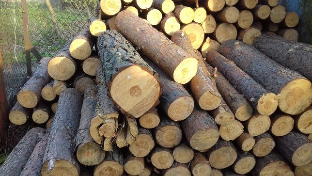 Drewno opałowe sosnowe Radzymin - Wołomin i okolice transport