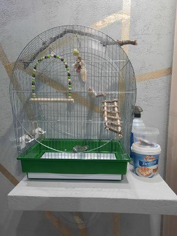 Klatka dla papug nimfa falista