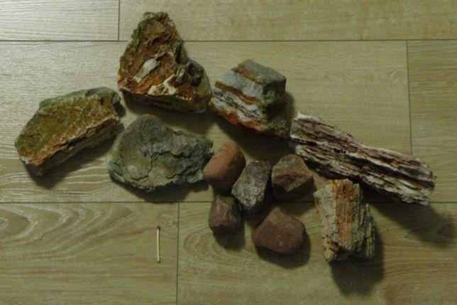Kamienie naturalne x 11 - ozdoba do akwarium, terrarium
