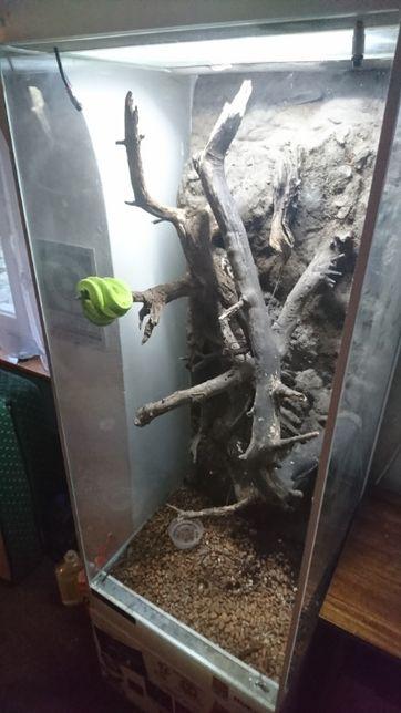Terrarium Gady Nadrzewne Wertykalne Pionowe 150x60x60cm