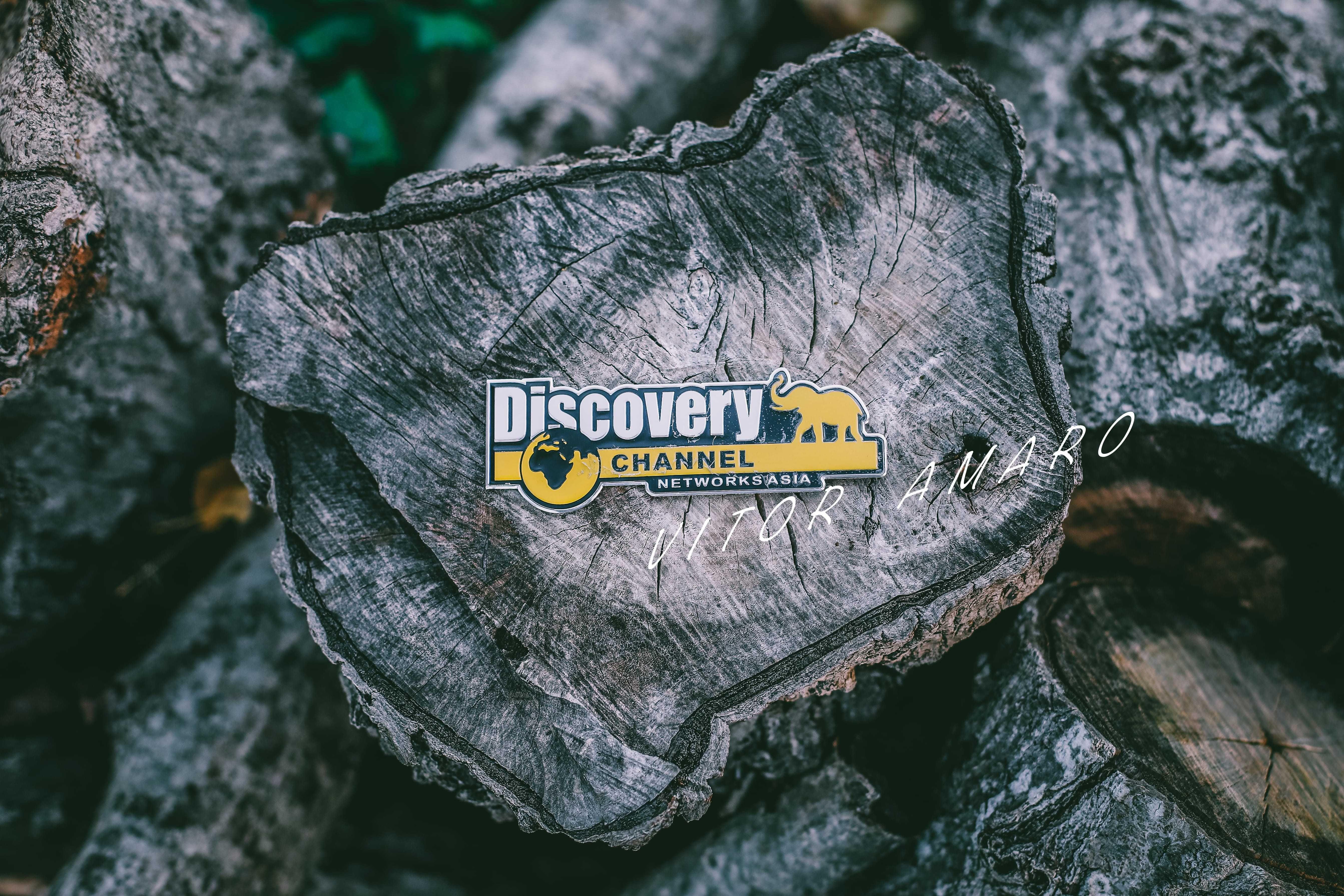 Simbolo Logo Discovery Channe Detalhe Interior Exterior  NOVO