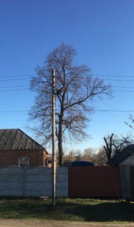 Спил аварийных деревьев, обрезка, кронирование, недорого, весь Харьков