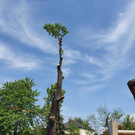 Tanio,wycena gratis.Wycinka drzew trudnych.Uslugi mulczerem,rebakiem