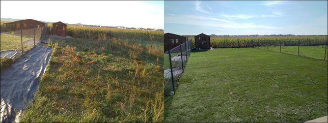 Usługi ogrodnicze zakładanie trawnika trawnik koszenie sprzątanie