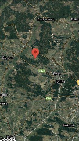 Бабинці 26 соток земельну ділянку (Буда-Бабинецька)