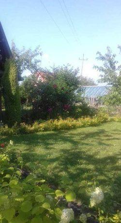 Działka ogrodowa