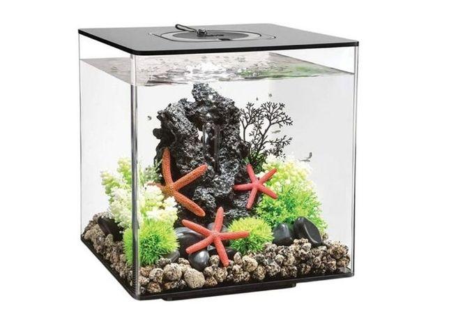 Aquario Cube 30 Led Branco