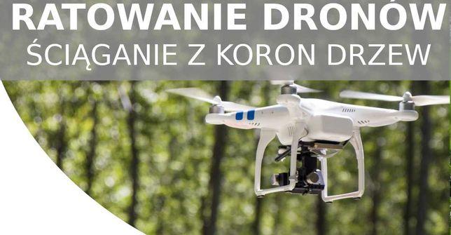 Ściąganie kotów i dronów z drzewa