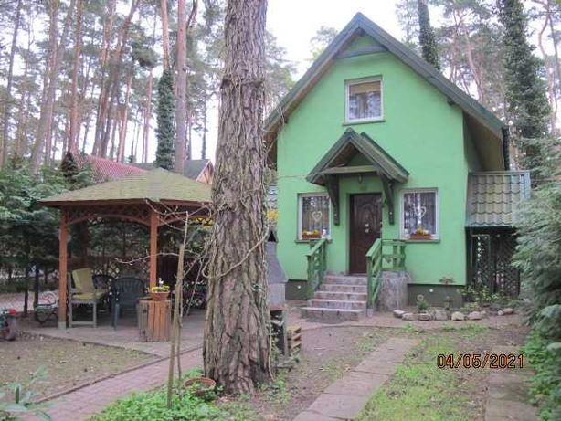 wynajmę zielony domek