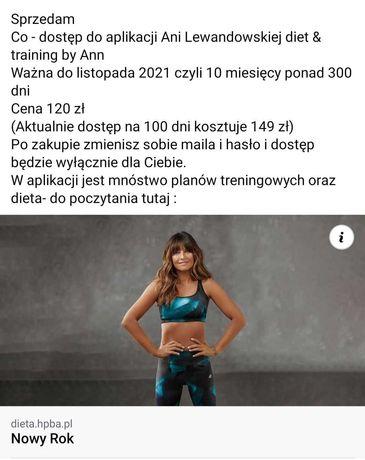 Dostęp do aplikacji diet & training by ann