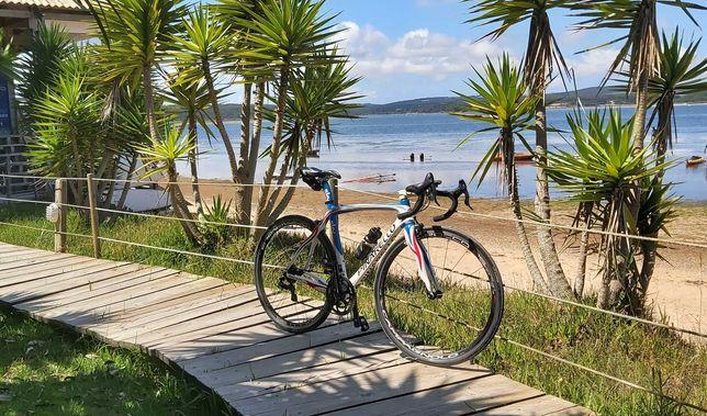 Pinarello Ciclismo Carbono