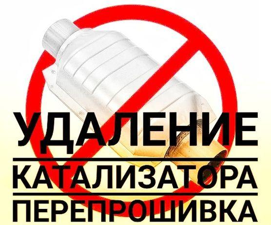 Удаление катализаторов прошивка euro 2 чип-тюнинг автоэлектрик