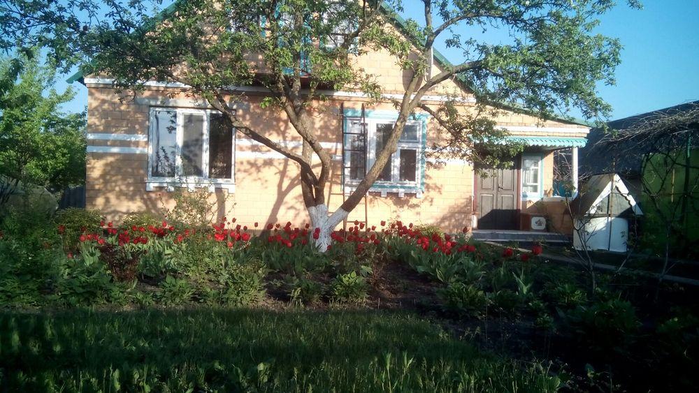 Продам дом Пасечники - изображение 1
