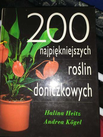 200 najpiękniejszych roślin doniczkowych - Heitz,Kogel