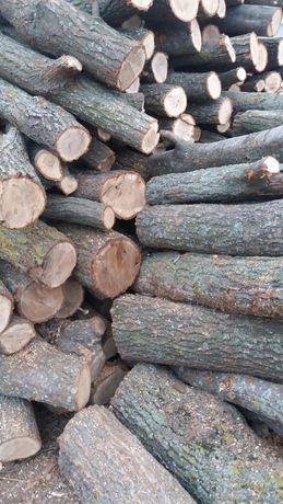 Продам дрова акация и дуб.