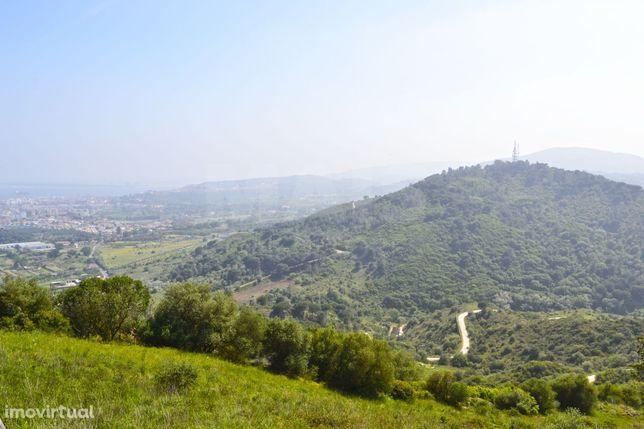 Moradia T4 em Palmela com vista para a serra da Arrabida