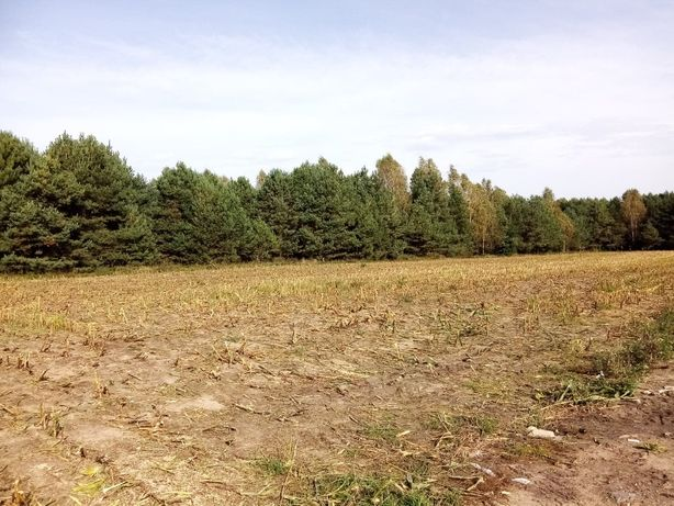 Działka budowlana na Mazurach przy lesie, 2 km do jeziora- inwestycja