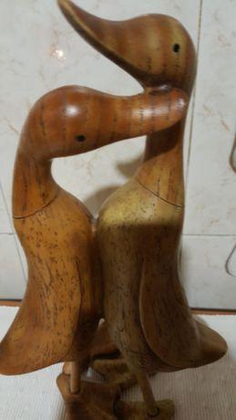 Casal de patos enamorados