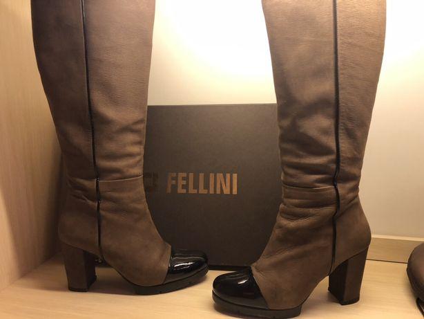 Женские сапоги Fellini