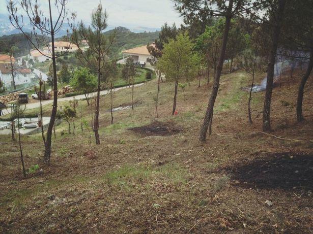 Limpeza e manutenção de terrenos