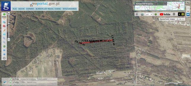 Tania działka leśna 1,18 ha. Las w cenie gruntu. Okolice Biłgoraja.