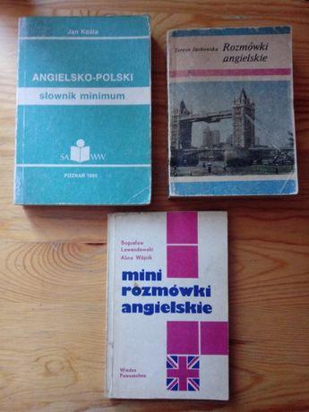 Rozmówki Angielskie/Mini Rozmówki Angielskie/Słownik Ang-Pol