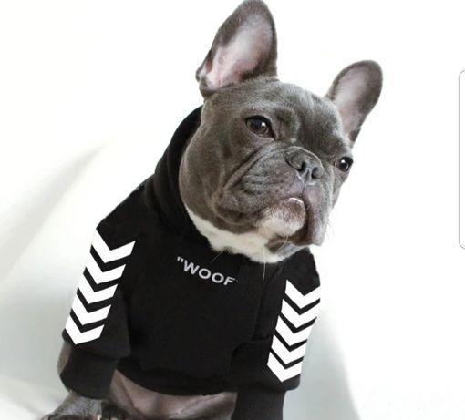 Bluzy bluza nowa dla psa buldog