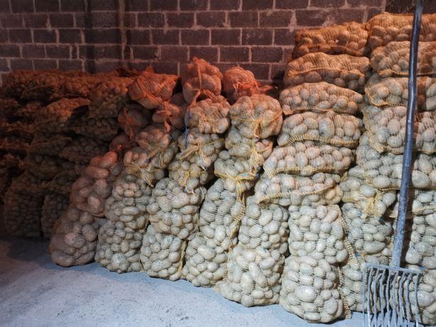 Ziemniaki jadalne oraz odpadowe, paszowe OKAZJA!!!