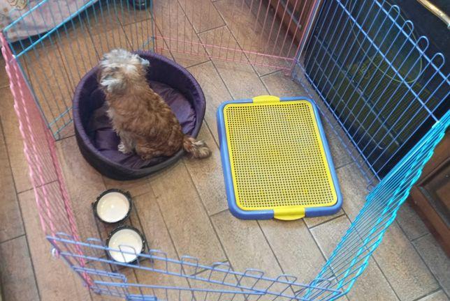 Манеж, вольер, ясли клетка для щенков,собак,кошек.