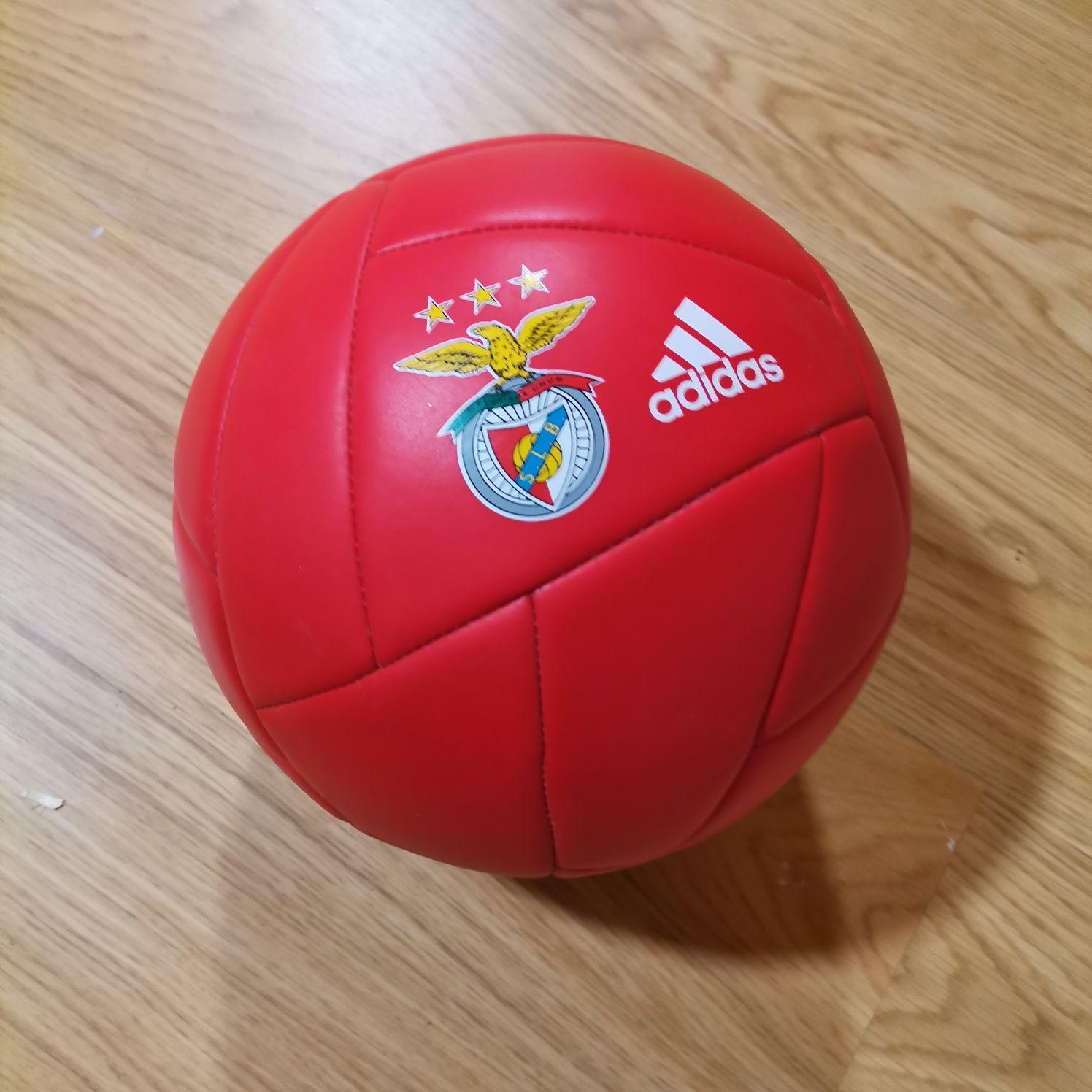 Bola de futebol Benfica