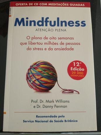 Mindfulness - Mark Williams (portes incluídos)