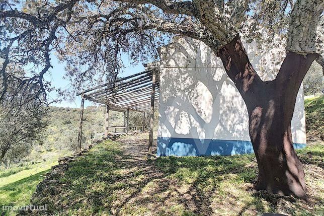 Quinta localizada em plena Serra D'Ossa, no Concelho do Redondo