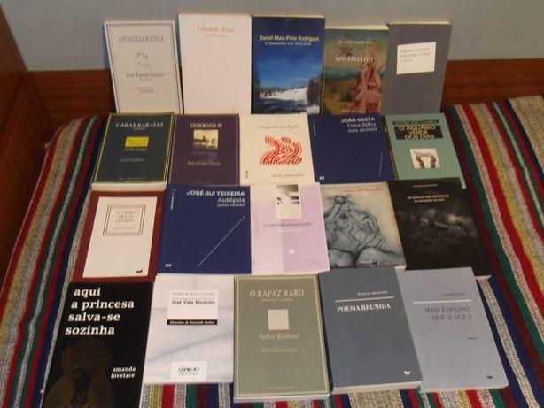 Lote de livros de (e sobre) poesia