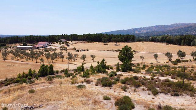 Belo terreno para construção em Vale de Prazeres