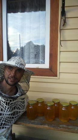 Пропоную справжній мед ціна за 5 літрів 530 грн.