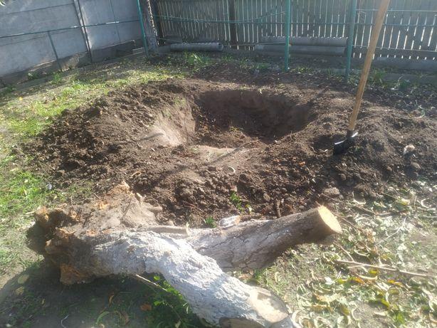 ПОКОС ТРАВЫ Уборка участка , спил дерева, культивация, вывоз мусора