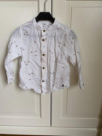 Koszula Zara 18-24 rozmiar 92 ze stójką z konikami biała