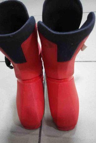 Горнолыжные ботинки Salomon SX80