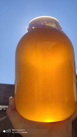 Мед, подсолнух+ разнотравье. 150грн литр