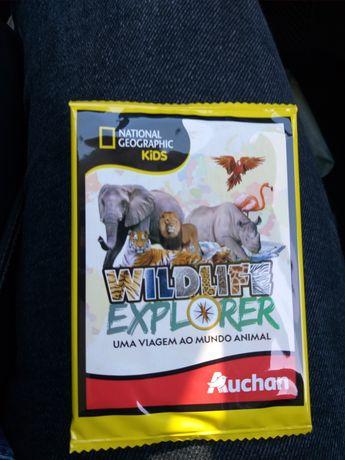 Colecção mundo animal Auchan