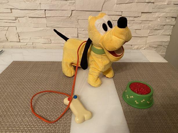 Pies Pluto - szczeka, chodzi - stan idealny