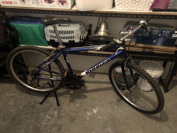 Bicicleta de montanha Orbita