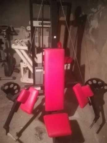 Maszyna na bicepsy.