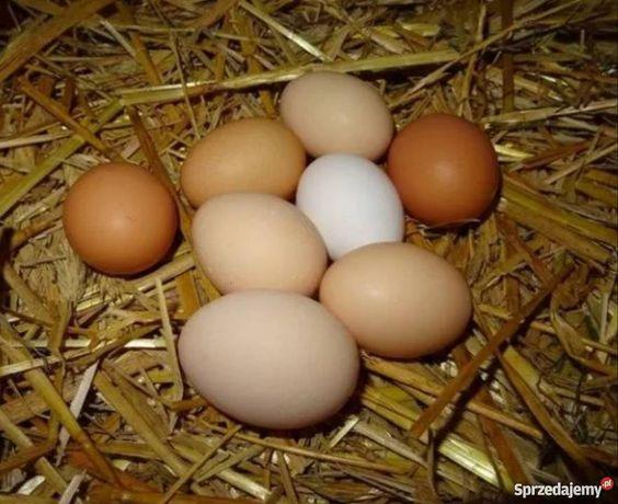 Jaja wiejskie 30szt