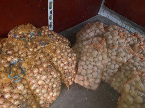 Sprzedam ziemniaki jadalne wineta