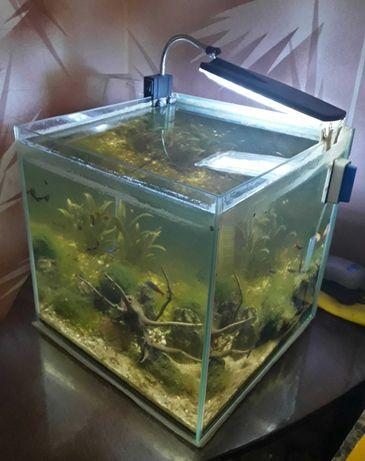 Кубик на 20 литров.